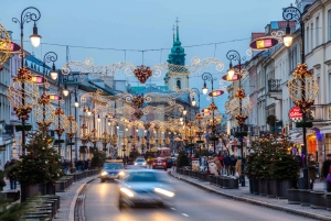 Warsaw: Private Walking Tour with Professional Guide