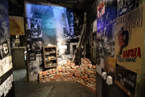 Warsaw Uprising Museum and Lazienki Park Small Group Tour
