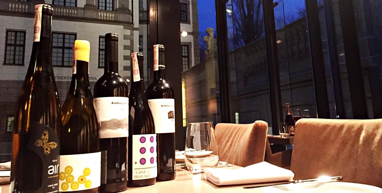 Portuguese wines tasting in Tamka 43 Restaurant