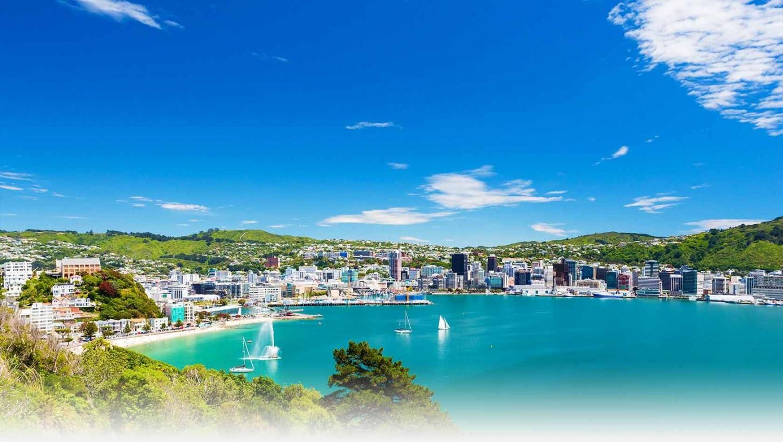 My Guide Wellington