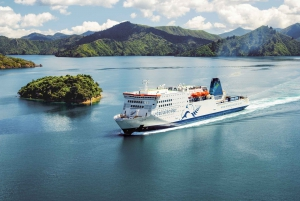 1-Way Ferry Service Between Wellington and Picton