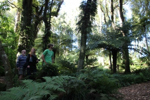 Full-Day Eco Trek, Seal Colony & Farm Tour from Wellington