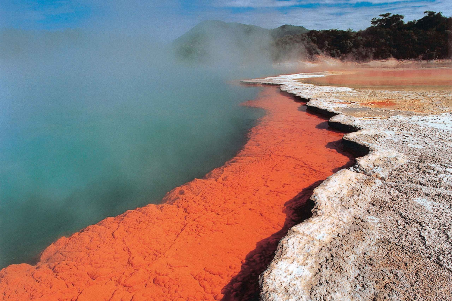 New Zealand: Auckland to Wellington 3-Day Tour via Rotorua