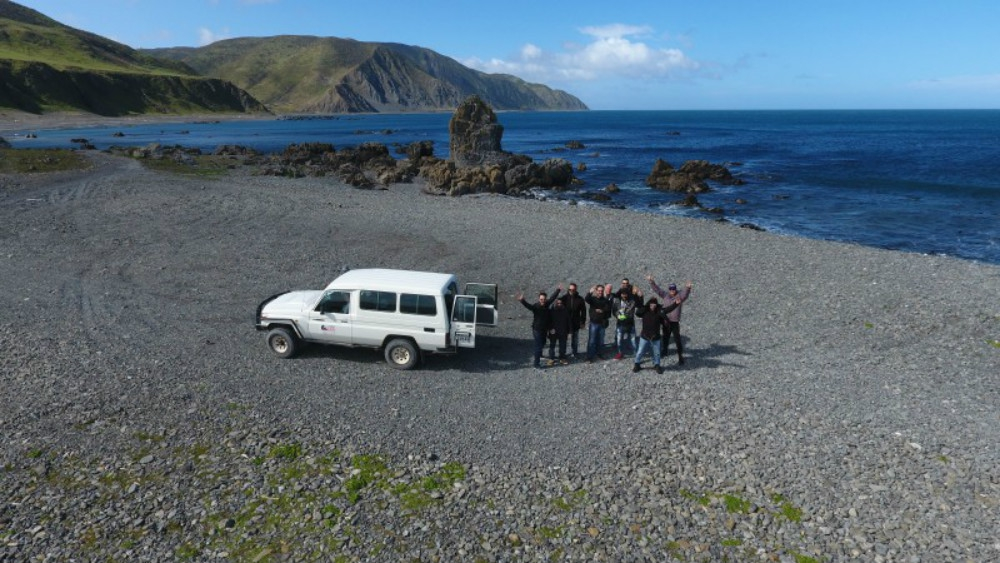 Best Scenic Tours In Wellington