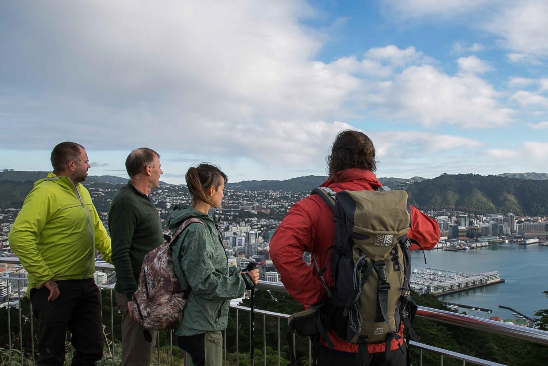 Southern Explorer Walking Tour From Wellington