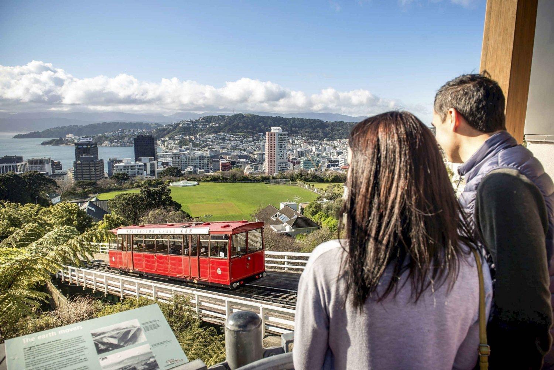 Wellington City Sights and Coastline 2.5-Hour Tour