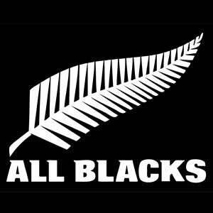 All Blacks v France