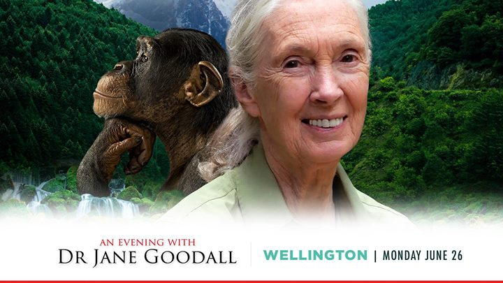 An Evening with Dr Jane Goodall - Wellington