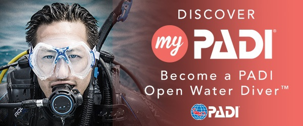 Learn to SCUBA Dive - PADI Open Water Diver Course