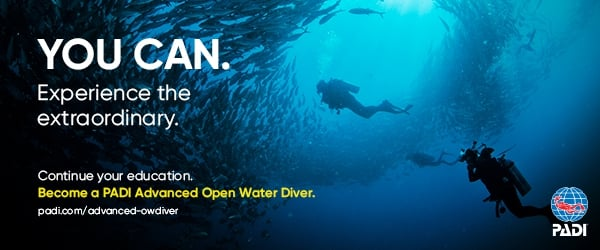 Next level Dive Course - Advanced Open Water Diver