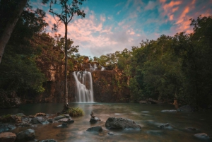 Airlie Beach: Cedar Creek Falls and Coral Sea Resort Tour