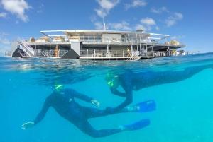 Airlie Beach: Outer Great Barrier Reef ReefWorld Pontoon