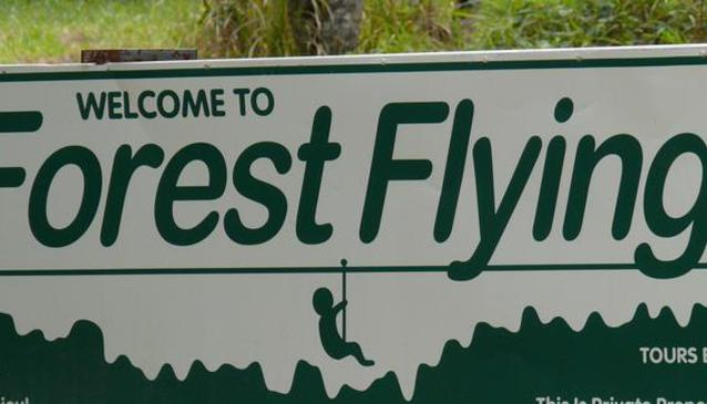 Forest Flying in Eungella National Park