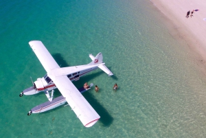 From Airlie Beach: Whitehaven Beach Seaplane Tour with Lunch