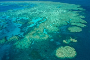 Great Barrier Reef: 3-Day, 2-Night Sail and Dive Whitsundays