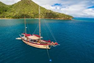 Summer Overnight Sailing, Snorkel, and Kayak
