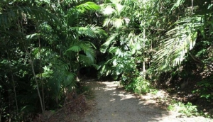 The Whitsunday Great Walk
