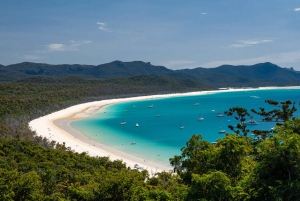 Whitehaven Beach: Full-Day Chill and Grill Beach Day