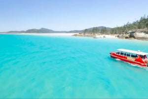 Whitehaven & Great Barrier Reef Snorkel Cruise with Lunch