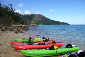 Whitsundays: Summer Overnight Sailing, Snorkel, and Kayak
