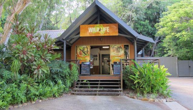 Wildlife Hamilton Island