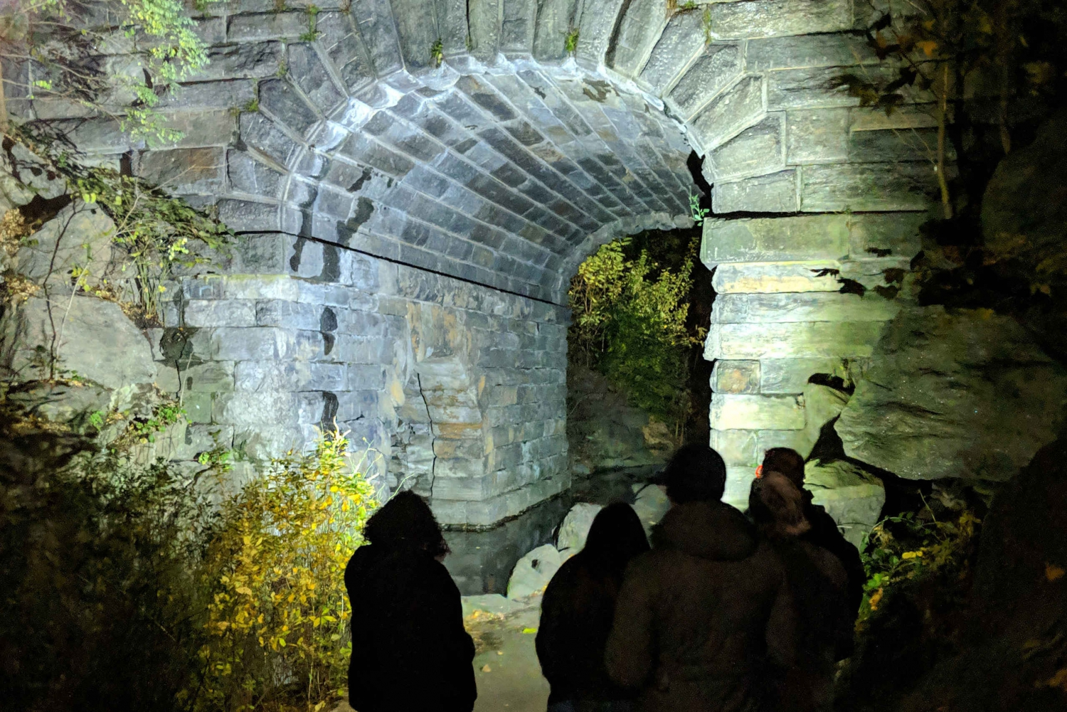New Central Park After Dark Tour