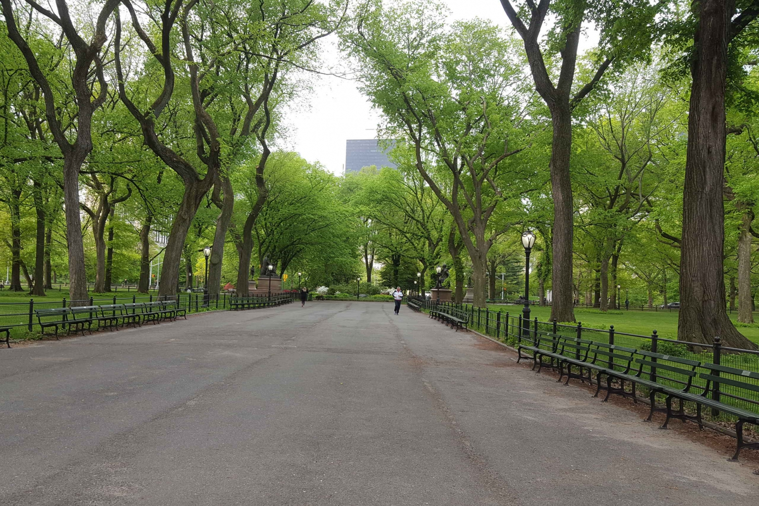 New York City: Central Park Walking Tour
