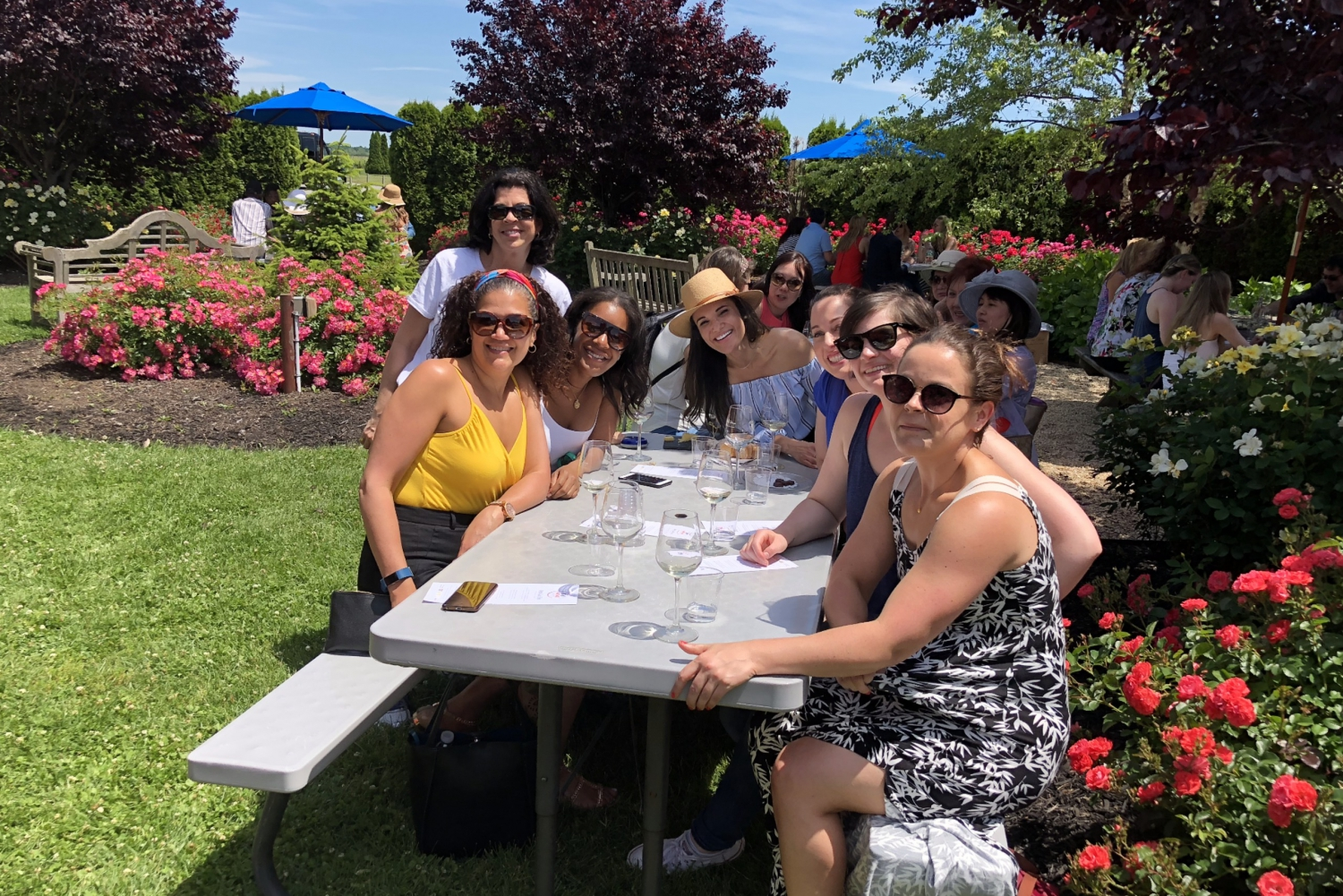 New York City: Day Trip To Wine Country