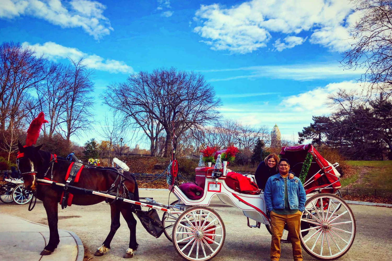 Short Central Park Evening Horse Carriage Ride