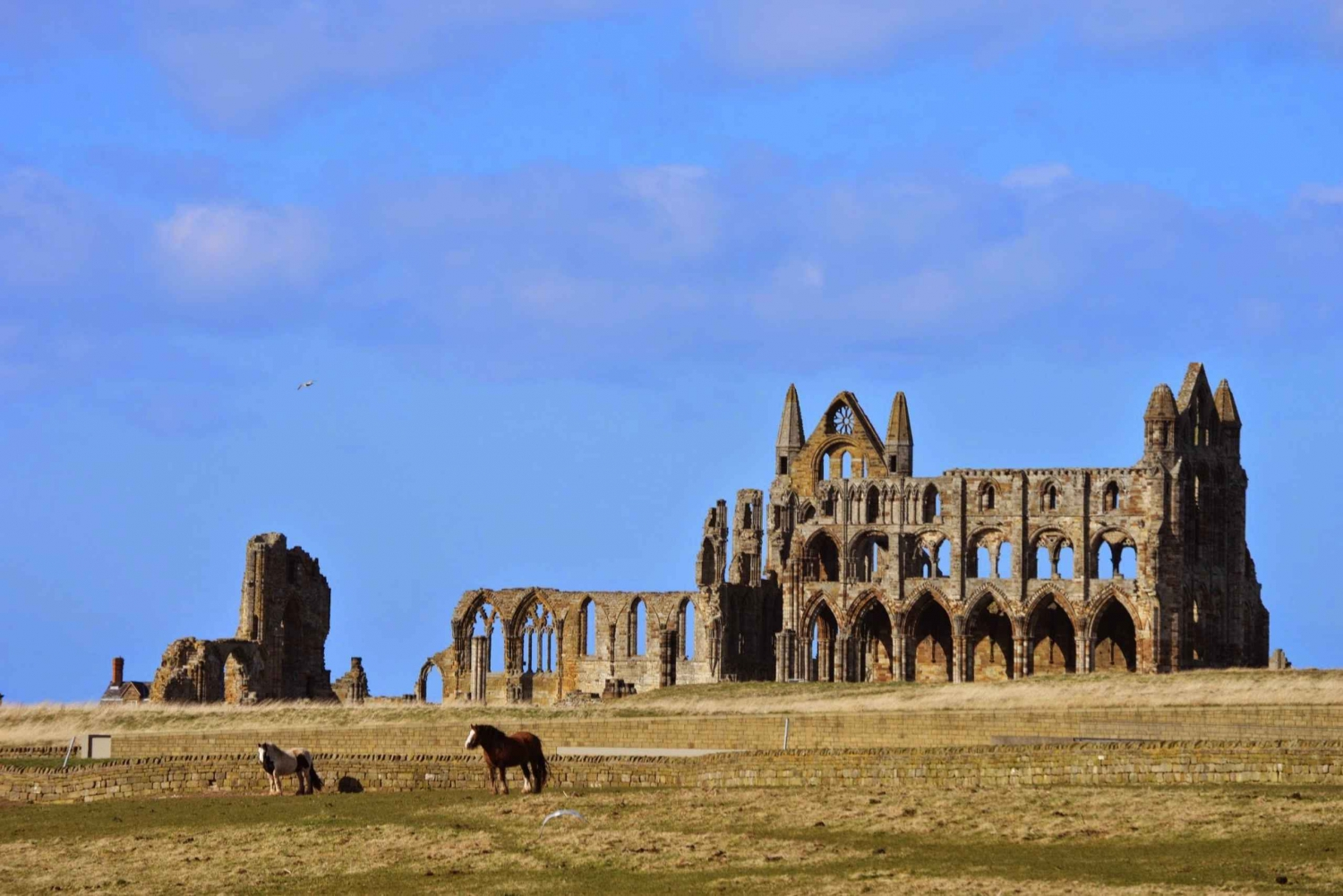 York & Yorkshire Full-Day Guided Walking and Minibus Tour