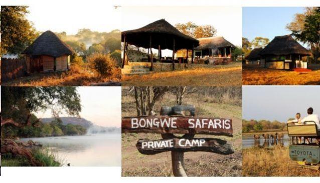 Bongwe Safaris