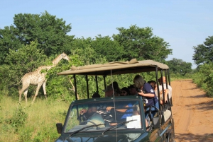 Chobe Day Trip from Victoria Falls, Zimbabwe