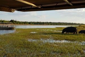 Chobe National Park Full Day & Overnight Safari