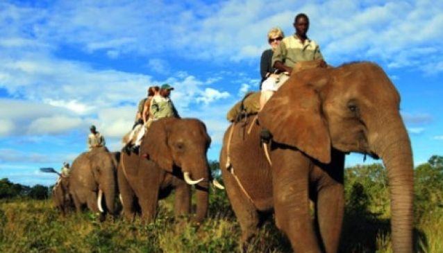 Elephant Back Safari - Safari Par Excellence