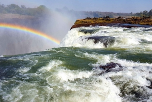 From Livingstone: Livingstone Island and Devils Pool Tour