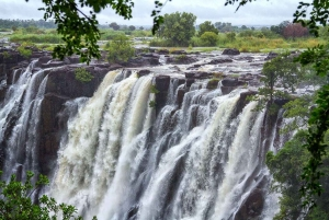 From Livingstone: Victoria Falls Guided Half-Day Tour