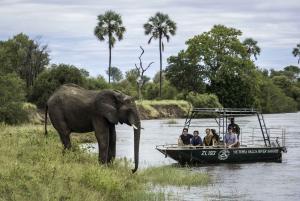 From Livingstone: Victoria Falls River Safari