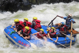 From Livingstone: Zambezi Full-Day Whitewater Rafting Tour