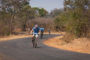 From Victoria Falls: Bicycle Tour