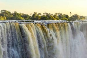 From Victoria Falls: Livingstone Island Tour & Devils Pool