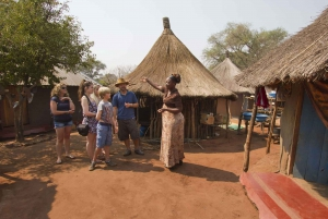 From Victoria Falls: Zimbabwe Traditional Village Tour