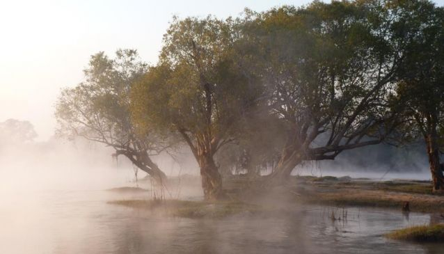 Kafue River Camp