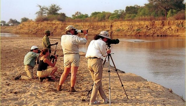 Photographic Safaris - Shenton Safaris