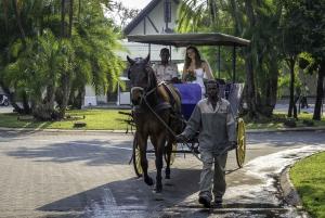 Victoria Falls National Park: Horseback Safari