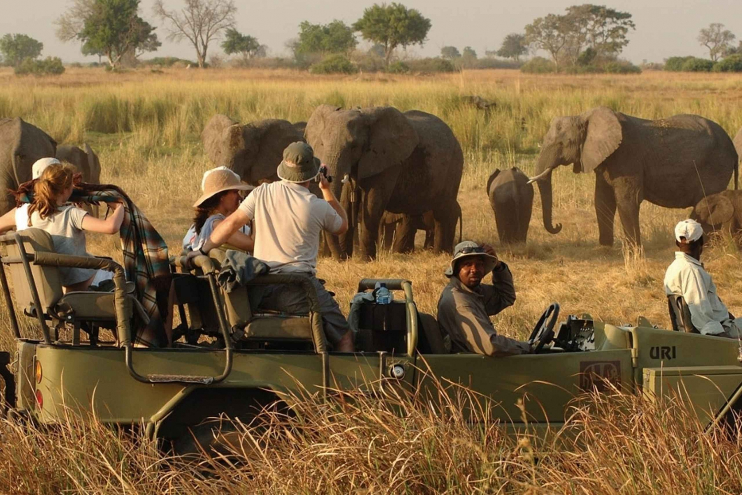 Victoria Falls Safari with Lunch and Sunset Cruise