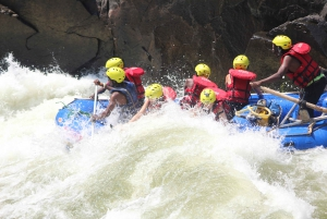 Zambezi River: Half-Day Whitewater Rafting from Livingstone