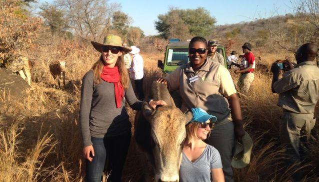 Africa Centre for  Holistic Management