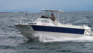 Avoca Marine
