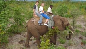 Elephant Back Safaris (Adventurezone)