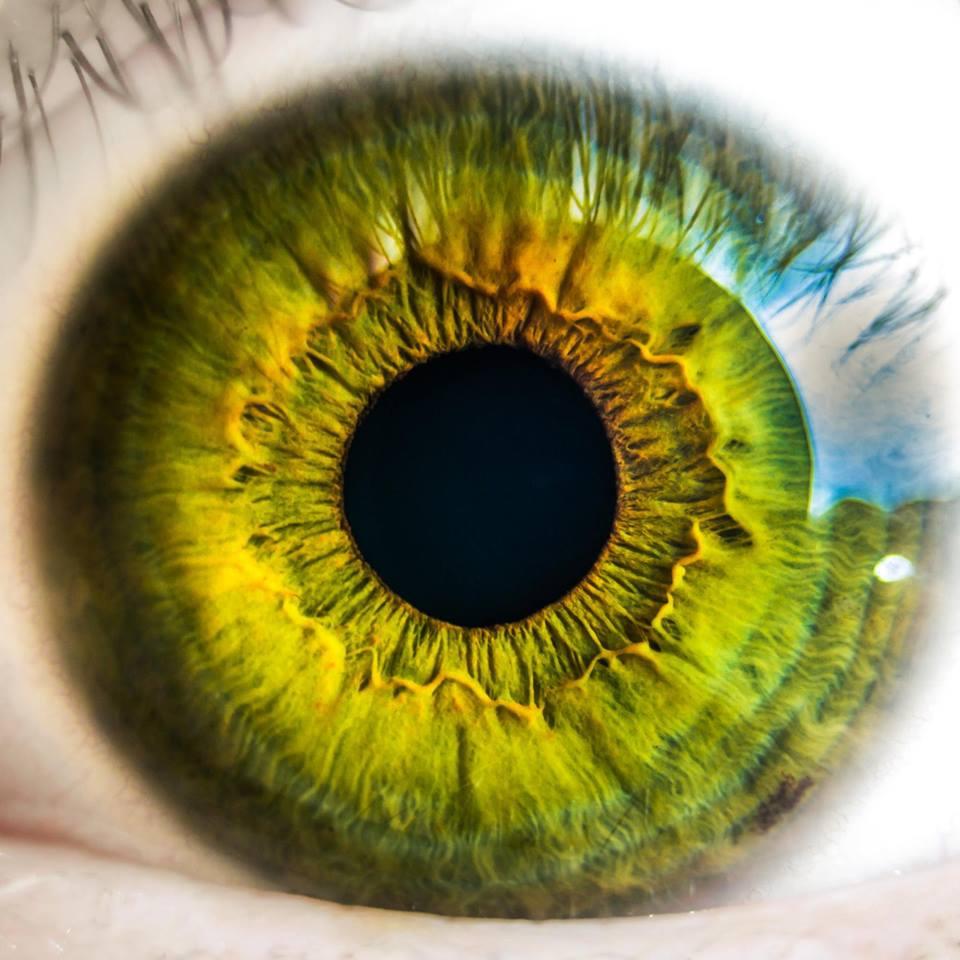 Eye Pod